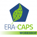 Second ERA-CAPS Strategic Workshop